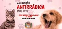Vacinação Antirrábica Cães e Gatos